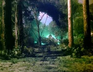 01.35 UFO in woods