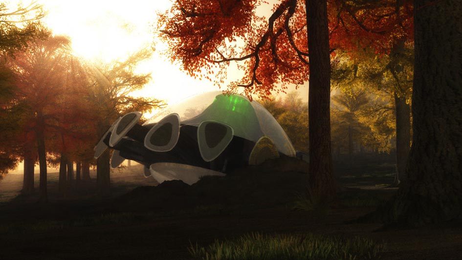 UFO in the Woods